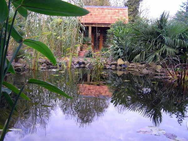 Henstead Exotic Garden, Suffolk