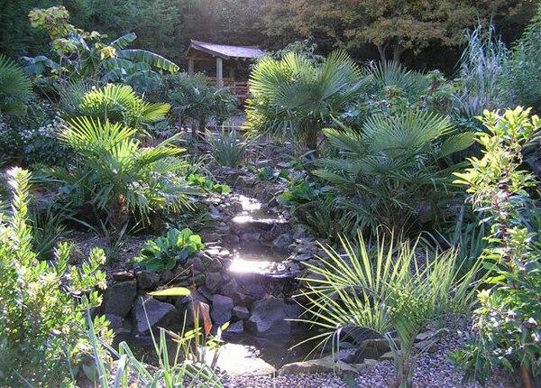 Henstead Exotic Garden
