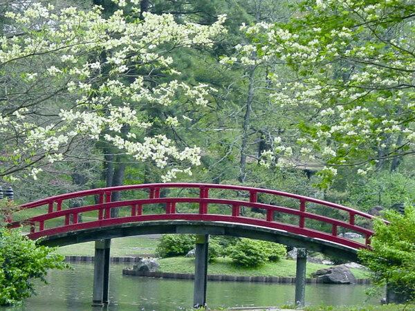 Memphis Botanic Garden, Spring