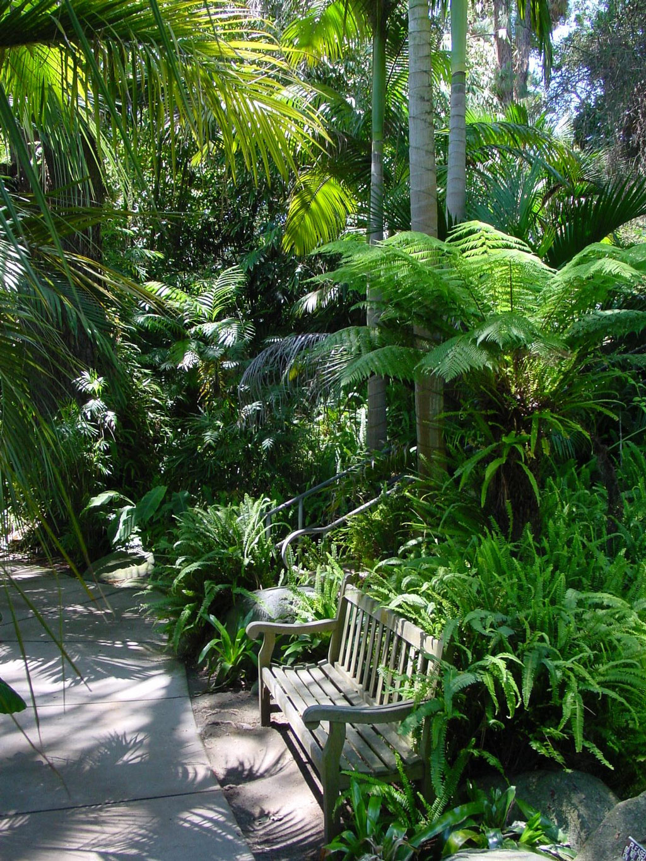 Bench, Quail Botanical Garden