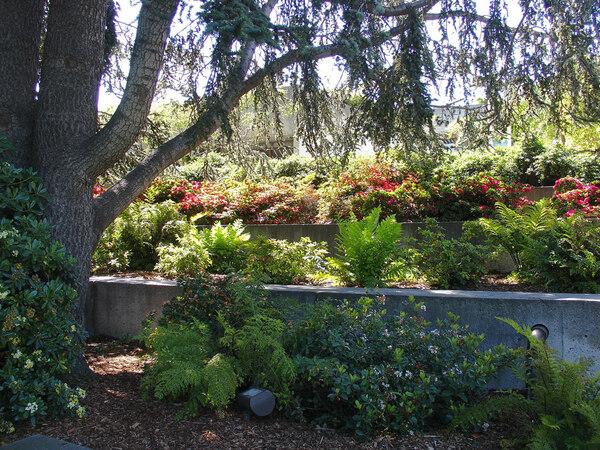 Oakland Museum of California and Gardens, CA