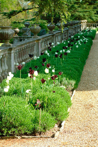 Hinton Admiral Gardens, Dorset