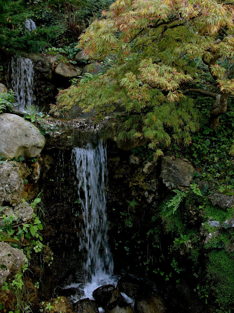 Waterfall, Hakone Gardens