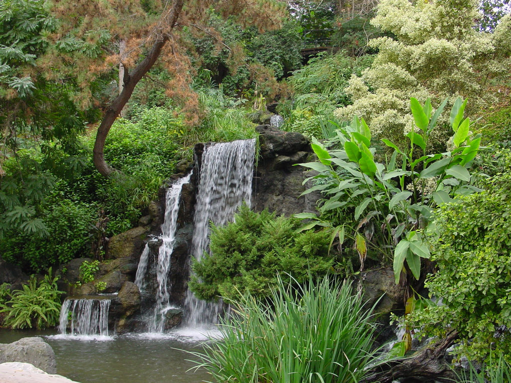Los angeles county arboretum botanic garden - Huntington beach botanical garden ...