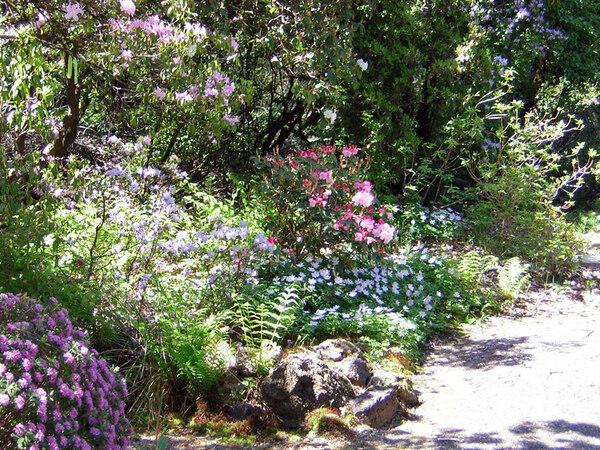 Rock Garden, Berry Botanic Garden