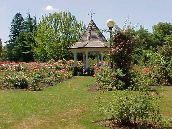 Bush S Pasture Park Rose Garden