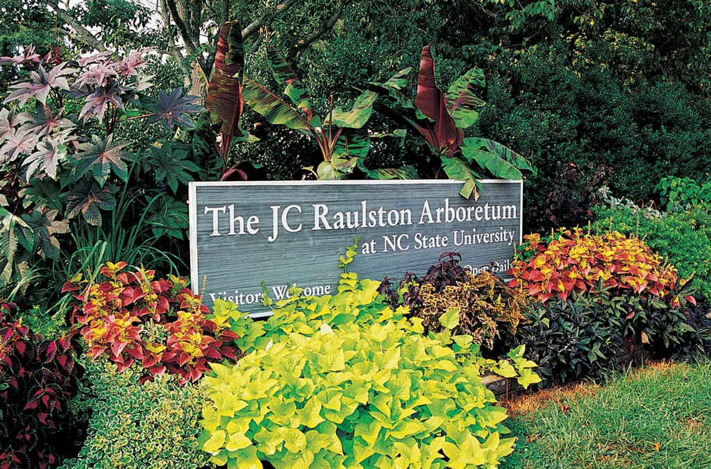 Jc raulston arboretum at nc state university for Gardens in raleigh nc