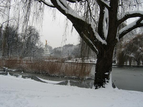 St James's Park, February 2009