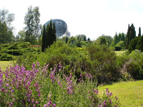Jodrell Bank Arboretum & Visitor Centre Starbuck Powersurge