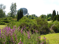 Medium jodrell bank arboretum and visitor centre 93 jpg original