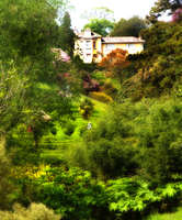 Medium glendurgan garden 118a jpg original