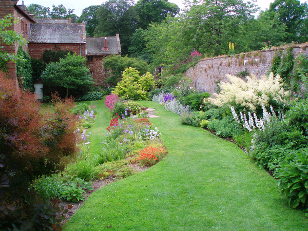 Acorn Bank Garden Miladus Edenensis