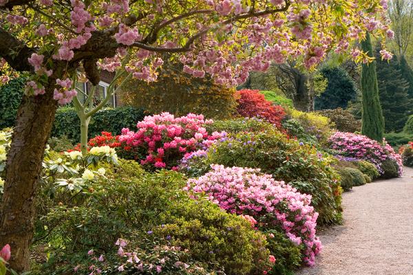 Lea Gardens Garry Platt