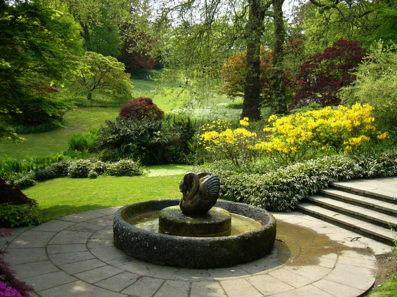 Dartington hall garden for Backyard patio landscaping