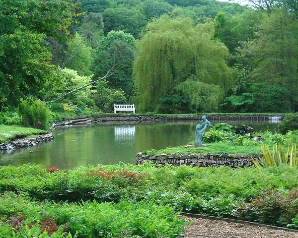 Marwood Hill Garden mubbble