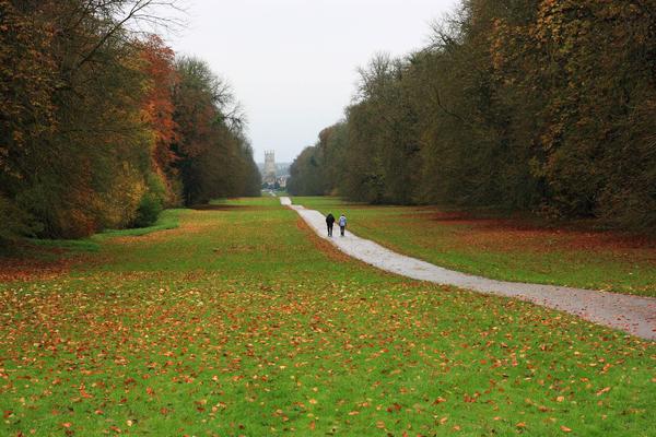 Cirencester Park Will Stubbs