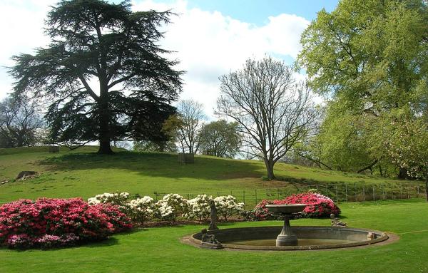 Lydney Park Gardens Pat Baker