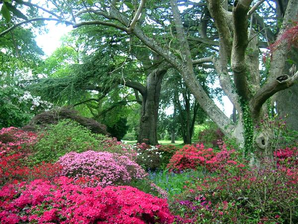 Exbury Gardens Joe Dunckley
