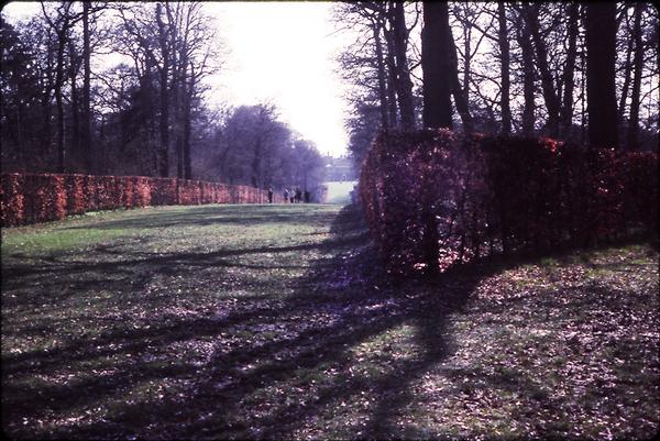 St Paul's Walden Bury Gardenvisit.com