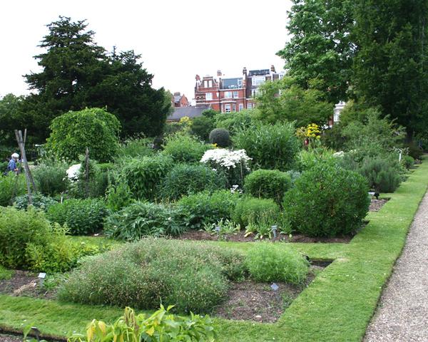 Chelsea Physic Garden Rick Phillips