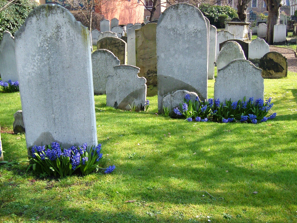 Image result for burial ground