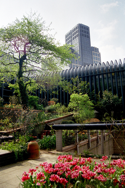 Museum of London, Nursery Garden Fraser Elliot