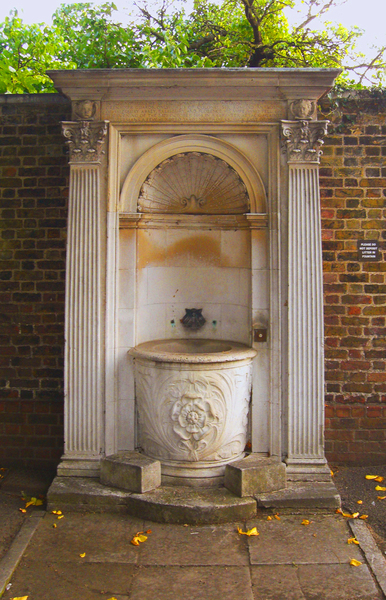 Royal Hospital and Ranelagh Gardens Yersinia pestis