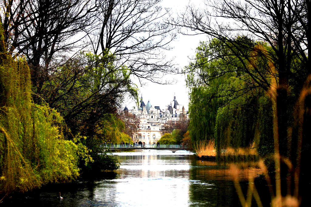 St James's Park Garry Knight