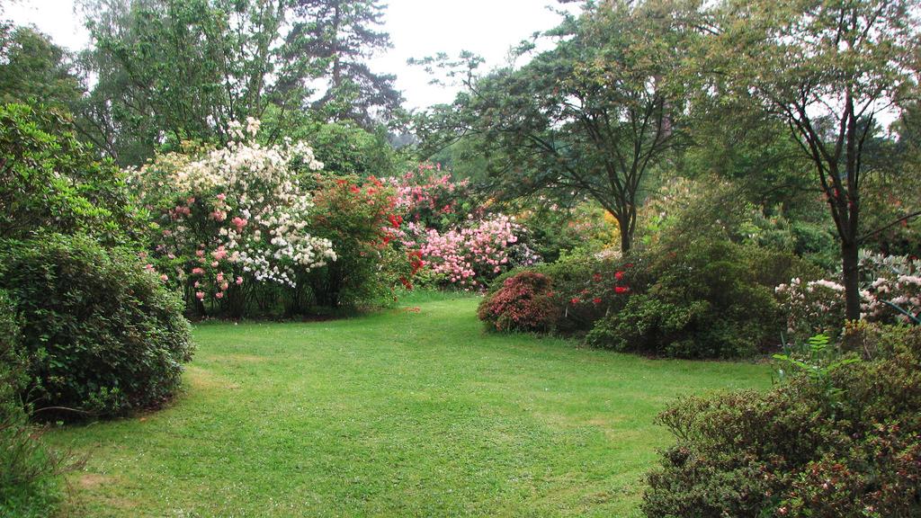 Crosswater Farm Garden