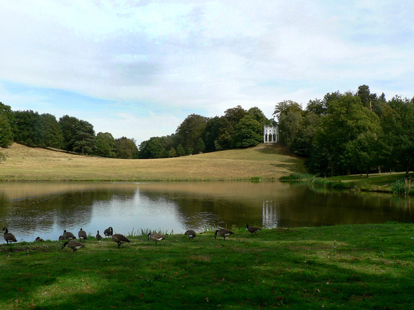 Painshill Park wimbledonian