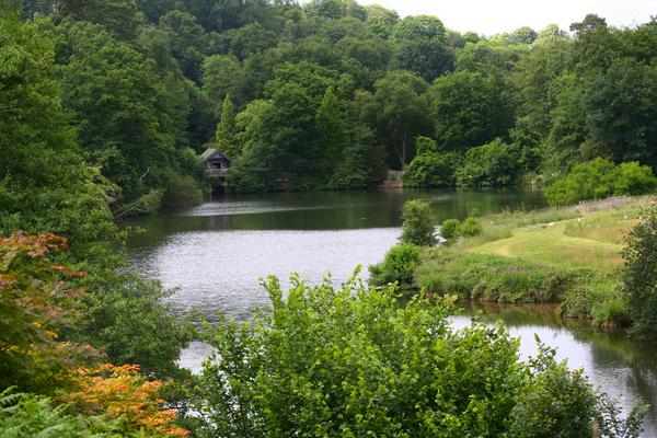 Winkworth Arboretum John Linwood