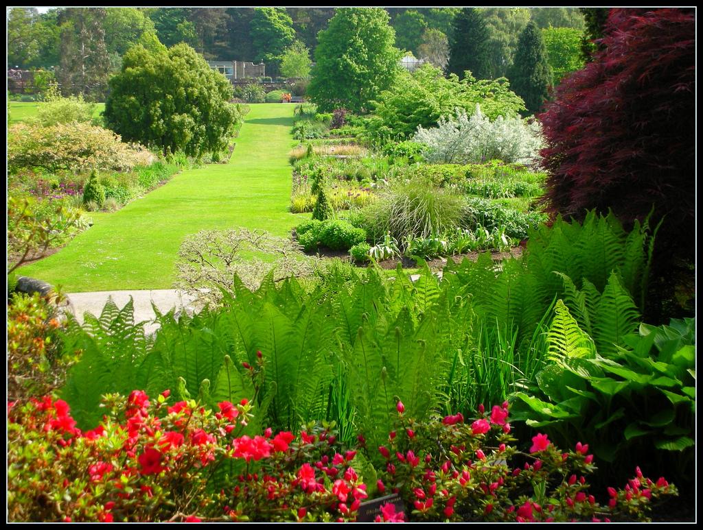 Rhs garden harlow carr for Landscape my garden