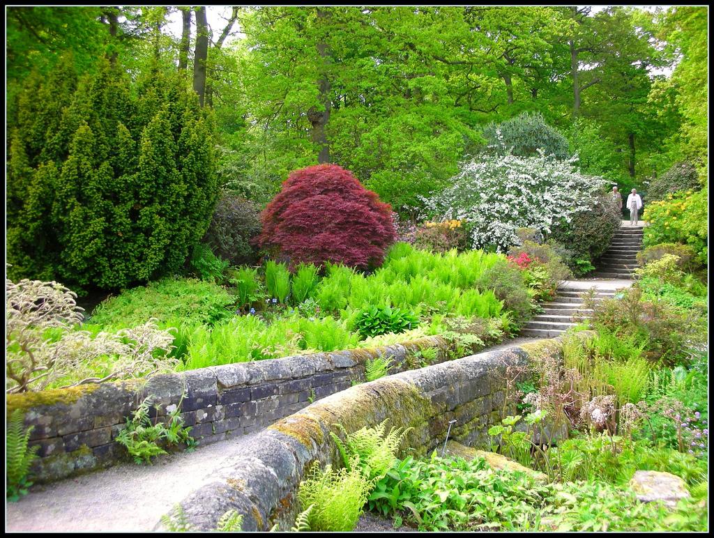 Rhs garden harlow carr for Landscape gardeners
