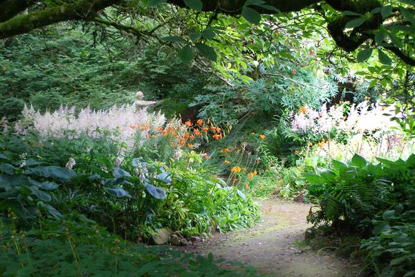 Annes Grove Gardens Liam Hughes