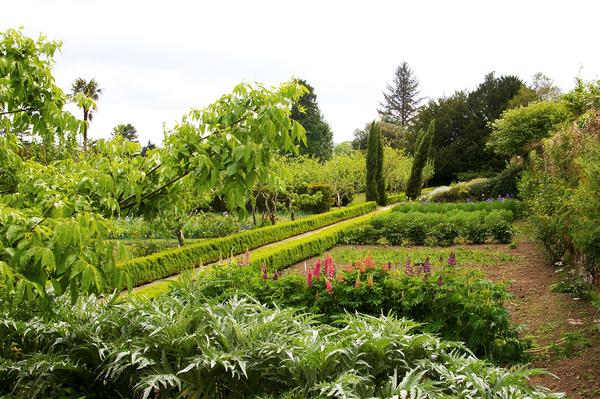 Lismore Castle Gardens Liam Hughes