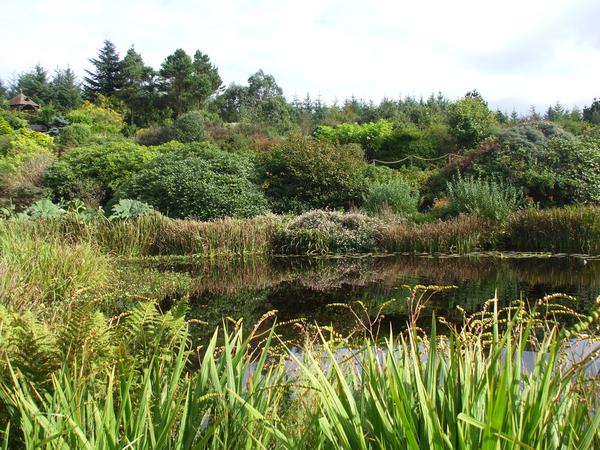 Glenwhan Garden ShelaghW