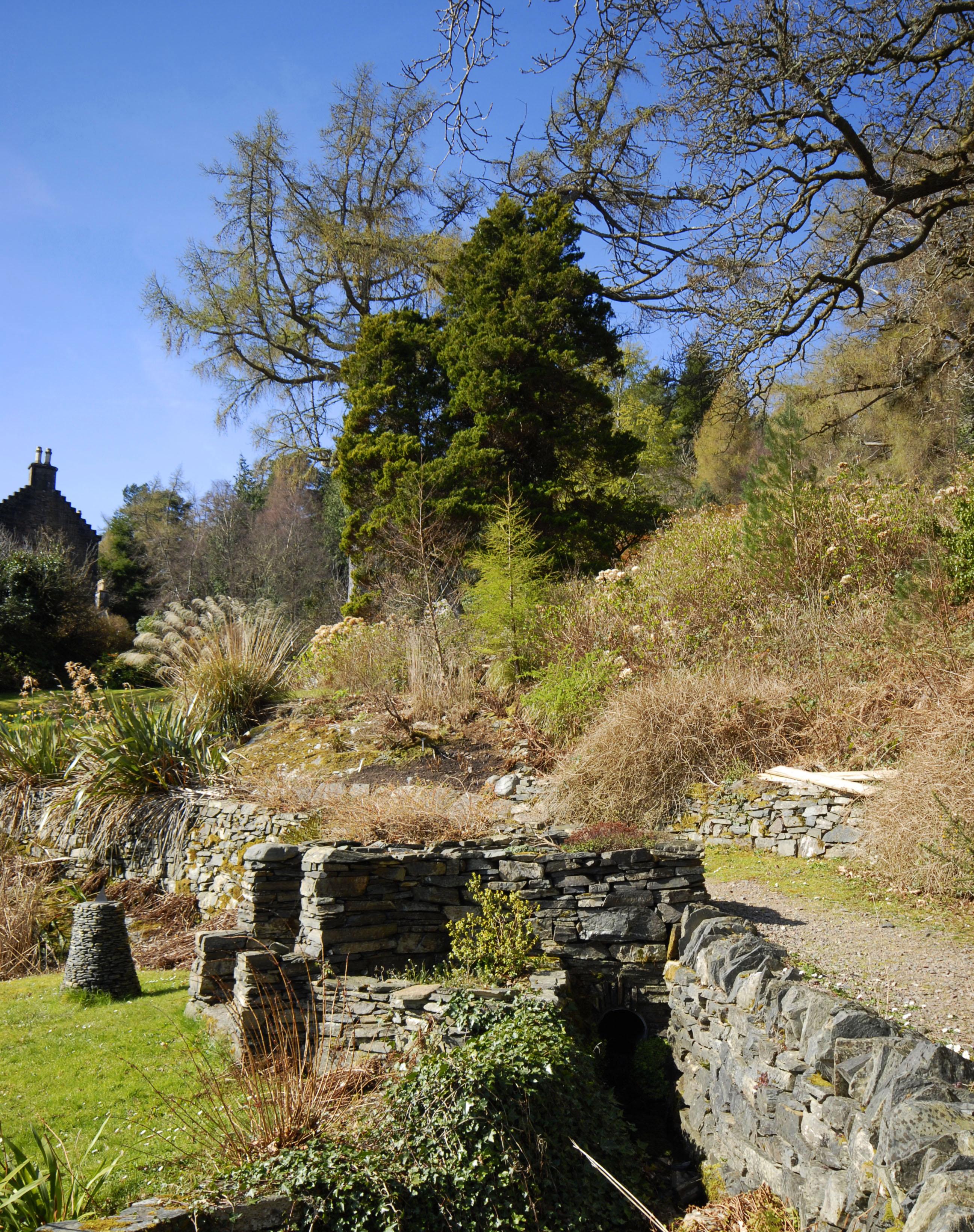 Lochalsh Woodland Garden