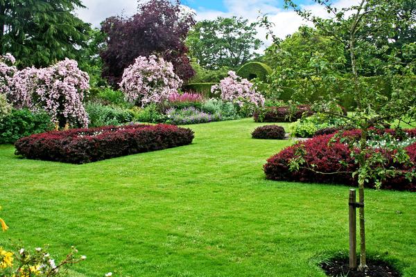 Malleny Garden tom heyes