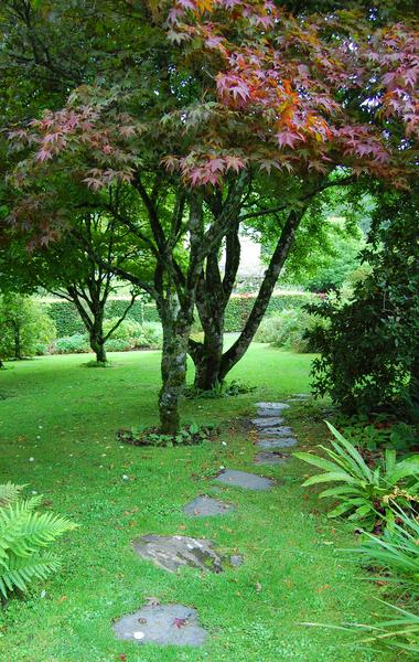 Colby Woodland Garden Tim Hodson