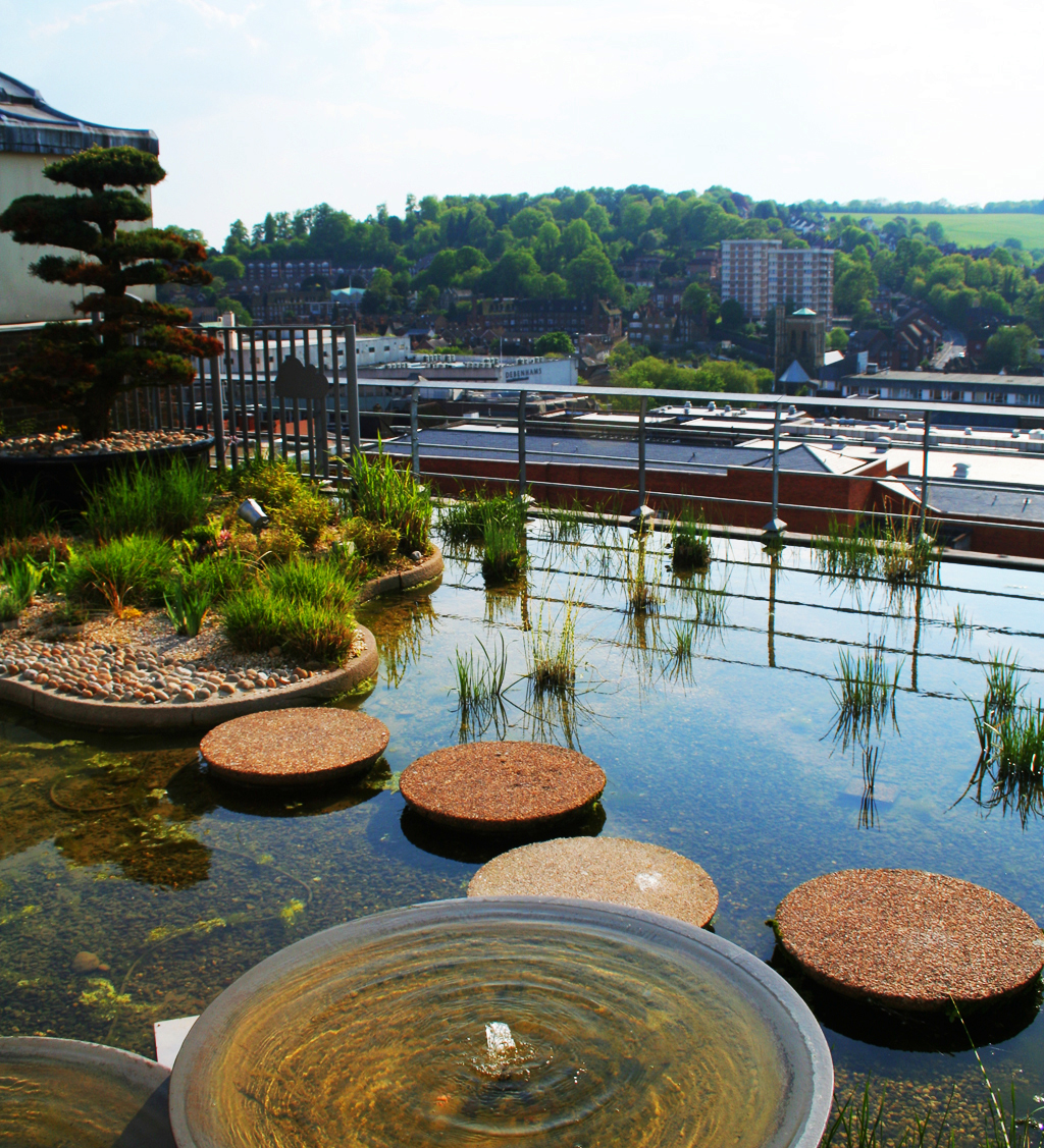Harvey 39 s store roofgarden now house of fraser for Roof garden pictures