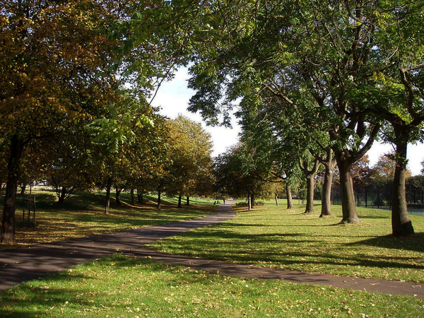 Burgess Park Ewan Munro