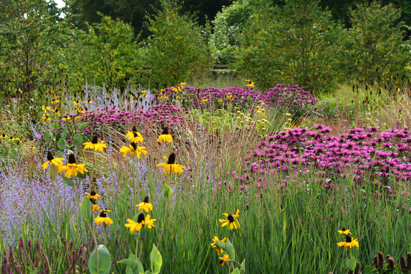 The Walled Garden at Scampston Michael Wilson
