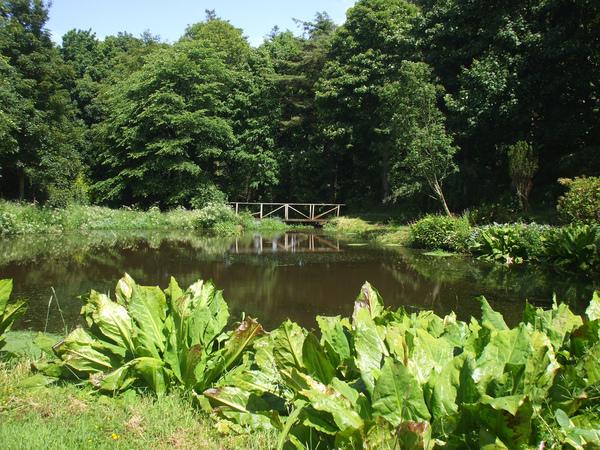 Ardwell Gardens ShelaghW