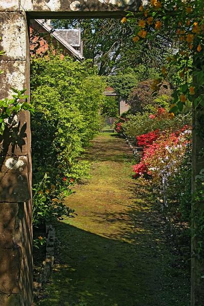 Bargany Gardens tmb2610