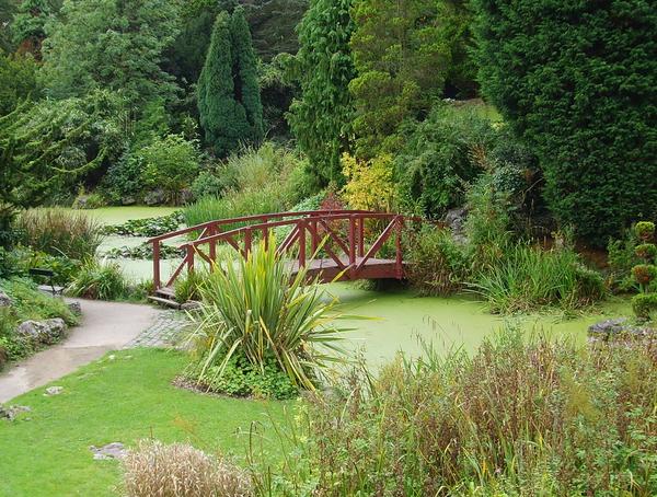 Avenham Park Tony Worrall