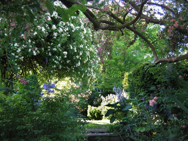Millgate House Garden JR P