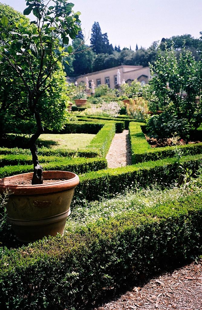 Villa Medici At Castello Villa Reale