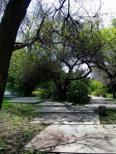 Parque do Museu Calouste Gulbenkian Alexandra Carvalho