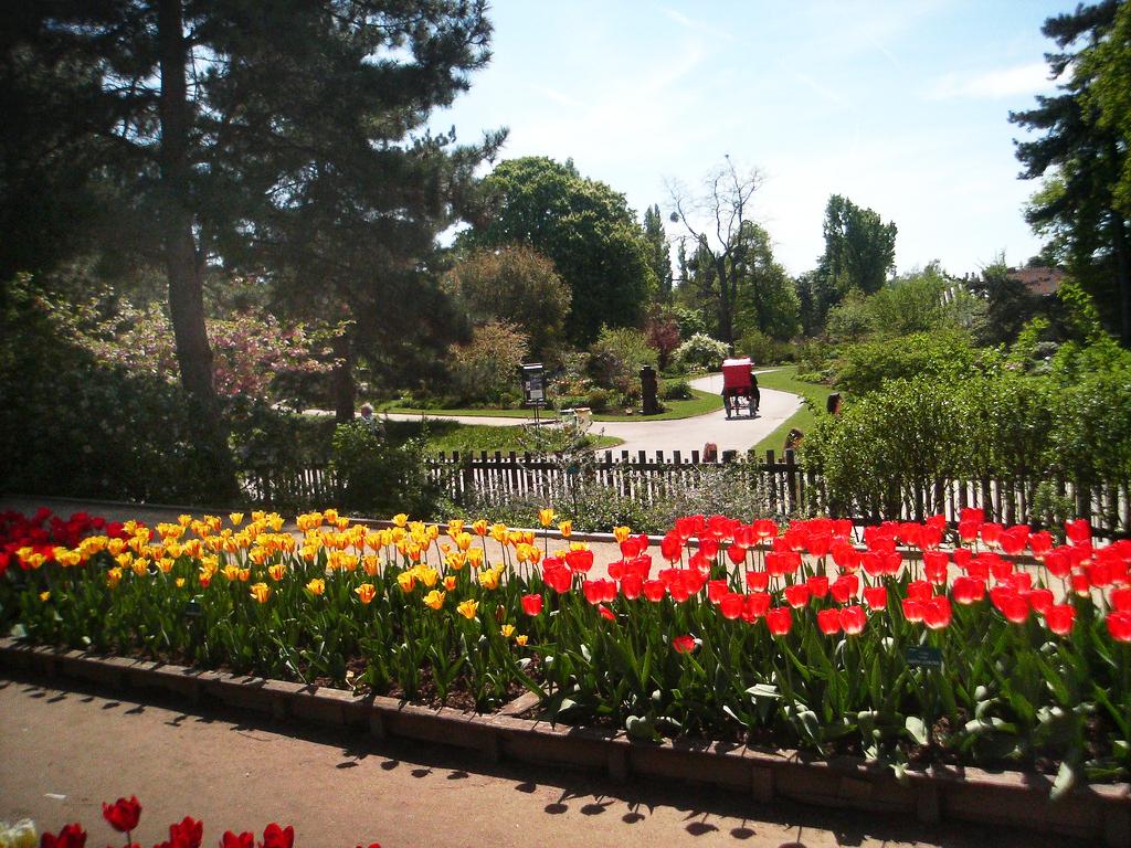 Parc Floral de Paris Rodrigo SEP  LVEDA SCHULZ