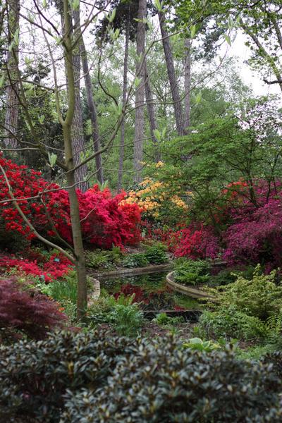 Parc Floral de Paris Aldric van Gaver
